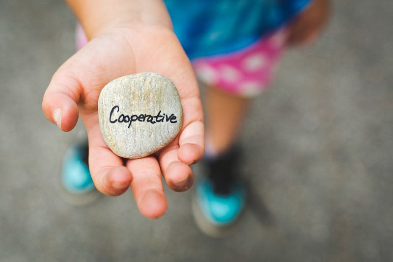 A child holding a rock that says Cooperative